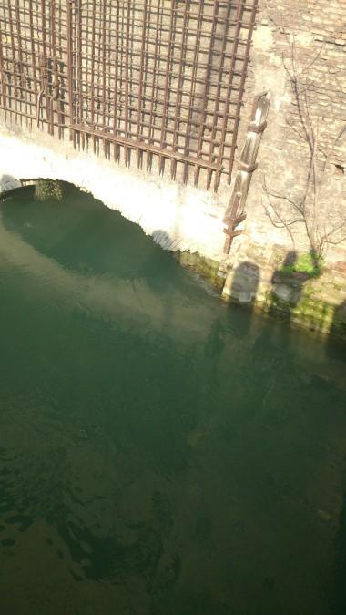 Canal di Reno